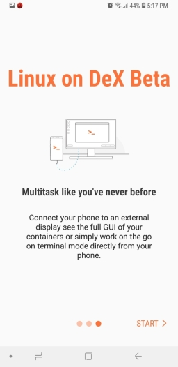 Screenshot_20181115-171706_Linux_on_DeX_Beta